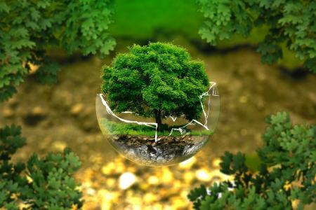 10 problémů spojených s ekologií
