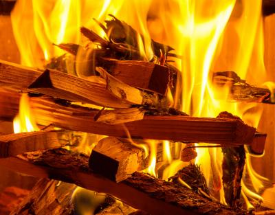 Jakým dřevem nejlépe topit?